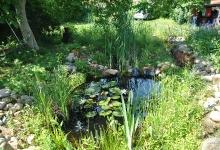 Teich im Heil Kunst Garten_1